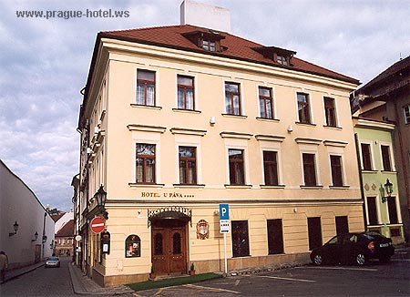 Pictures and photos of hotel U Pava in Prague